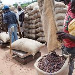 Climate crisis highlights urgency of diversifying Africa's economies By Zainab Usman